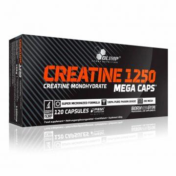 Olimp Creatine Monohydrate 120 caps | 1250mg Mega Caps